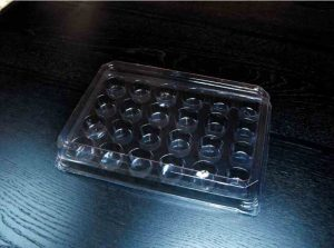 Chese plastic cu capac cu 24 alveole