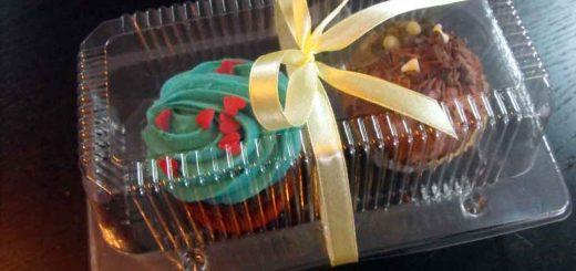 Caserole plastic (model River 2 – 4056) compartimentate pentru 2 muffins etc.