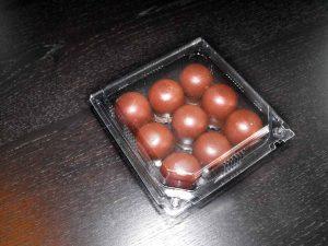 Caserole plastic cu capac integrat (model Nova – 4196)
