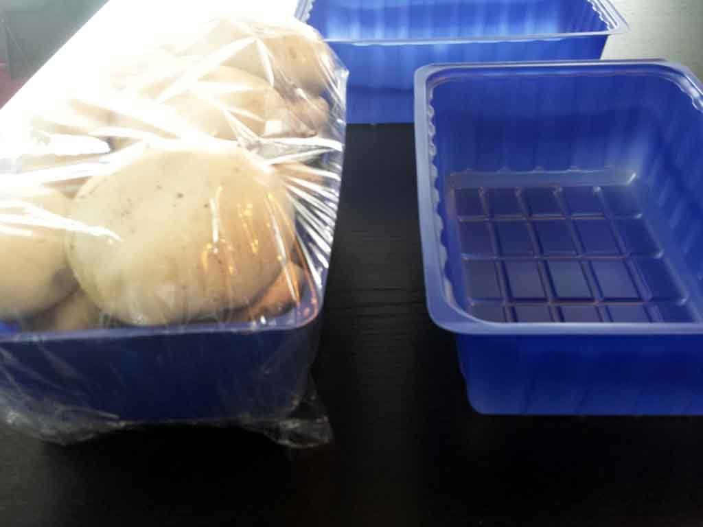 caserole ciuperci,caserole plastic ciuperci
