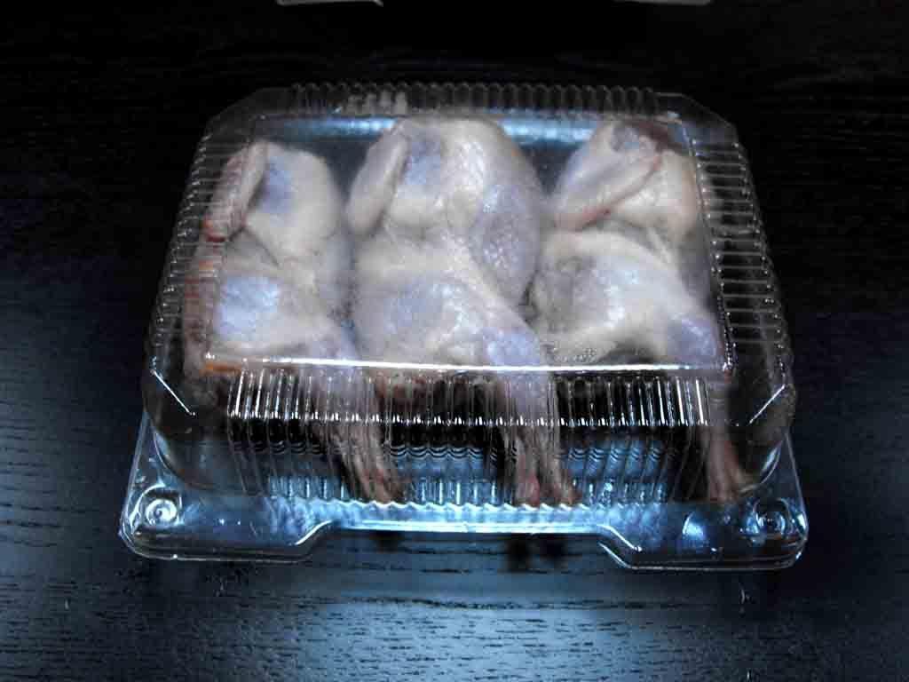 caserole de plastic pentru carne de prepelite.river 1