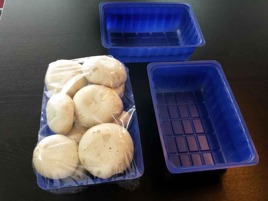caserole pentru ciuperci,caserole plastic