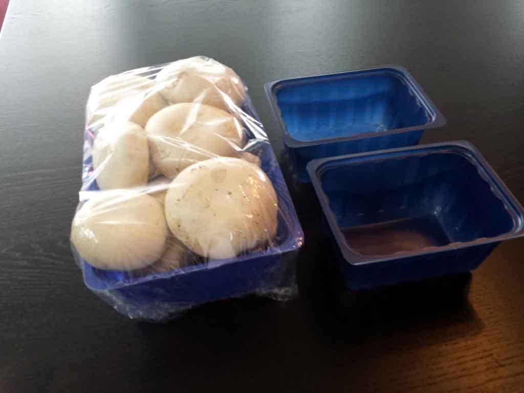caserole plastic pentru ciuperci,caserole plastic,productie caserole