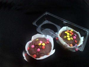 Caserole plastic compartimentate pentru doua briose etc.