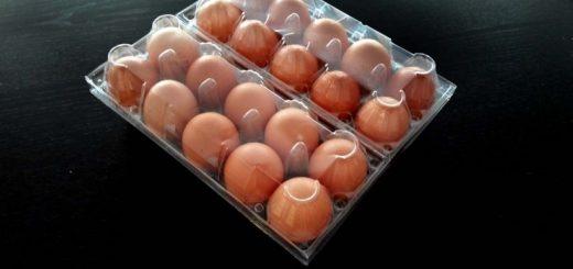 Cofraje plastic pentru oua 20 compartimente.