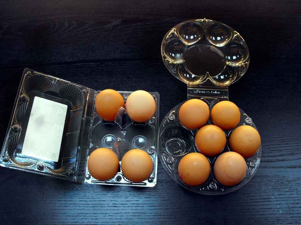 cofraje plastic oua gaina XL