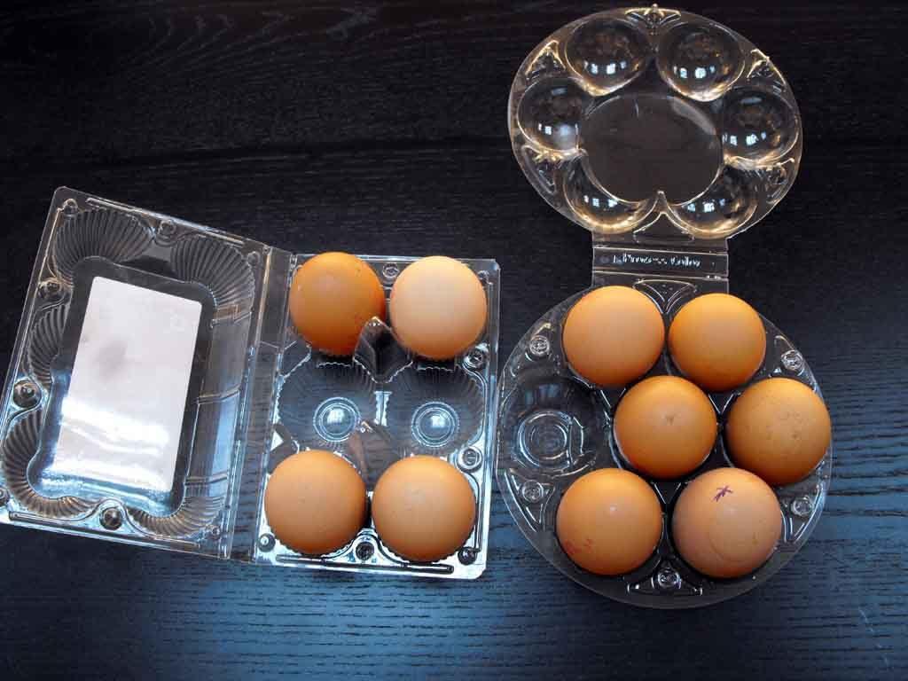 cofraje plastic pentru oua de gaina