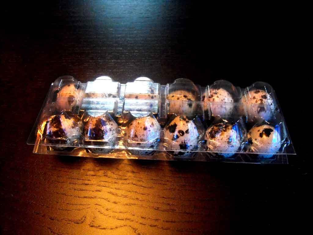 cofraje plastic transparent oua prepelita, cofraje plastic